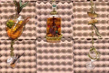 Radici nel rum