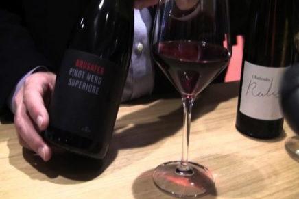 Due nuovi Pinot per Cavit. Rinnovata la linea Il Maso